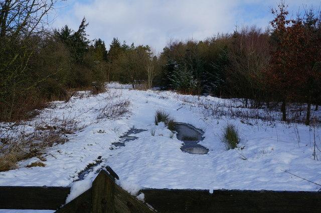 Farm track off the A6020