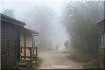 SP9314 : Going home in the fog at College Lake, Tring by Chris Reynolds