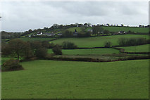 SX5857 : Grazing near Lower Venton Farm by JThomas