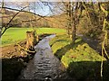 SX2067 : River island, Treverbyn by Derek Harper