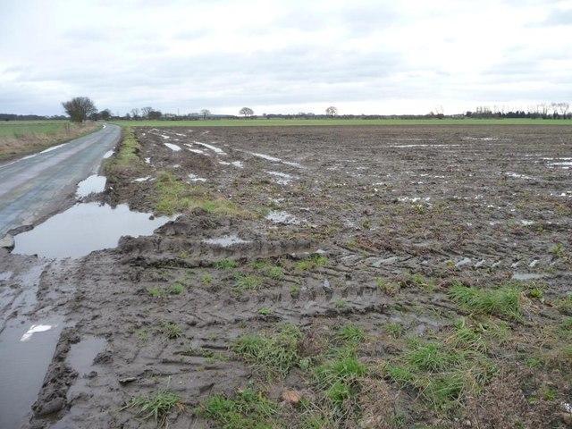 Waterlogged field entrance, west side of Fox Lane