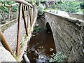 SJ9993 : Bridges over the river Etherow by Gerald England
