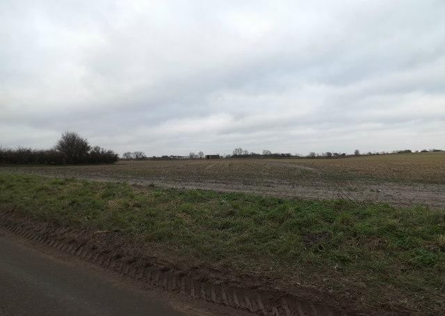 Fields off the B1121 Aldeburgh Road