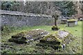 SU4098 : Covered in Moss by Bill Nicholls
