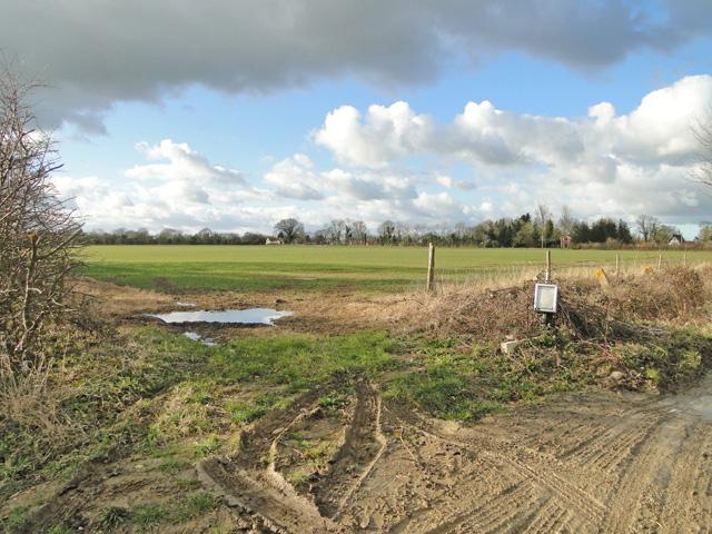 Open fields on Holbrook Hill Alburgh