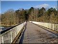 SD5428 : The Old Tram Bridge Crossing the River Ribble at Preston by David Dixon