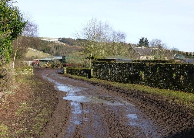 A mucky bridleway in Prendwick
