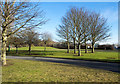 NZ2724 : Trees and grass - landscaping at Newton Aycliffe Industrial Estate by Trevor Littlewood