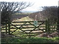 NU1733 : Partially overgrown field gateway, west of Burton by Graham Robson