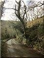 SX2052 : Lane to Polperro by Derek Harper