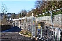 NT4836 : The Borders Railway, Low Buckholmside by Jim Barton