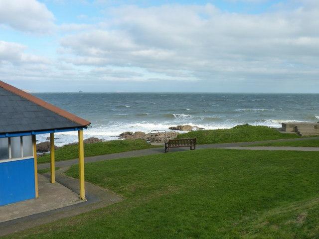 The Coast Path near Shoalstone Point