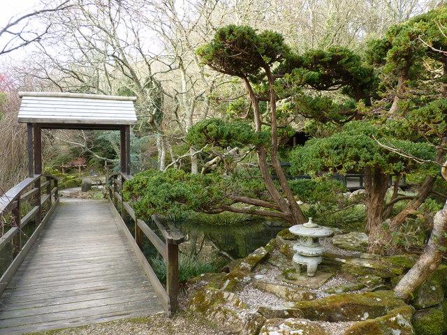 In the Japanese Garden, St Mawgan