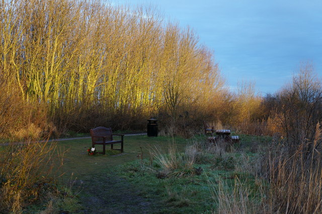 Picnic area  at Water's  Edge Country Park
