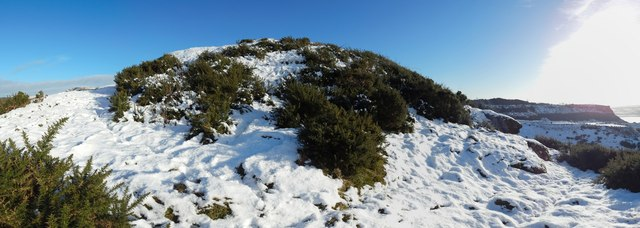 Dumbowie Hill: upper terrace