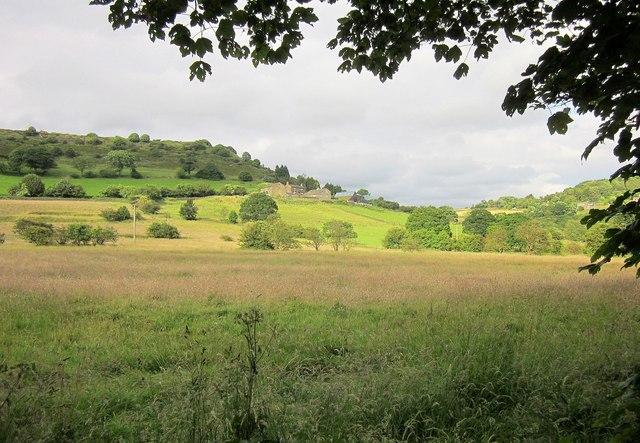 Farmland by Simm Carr Lane