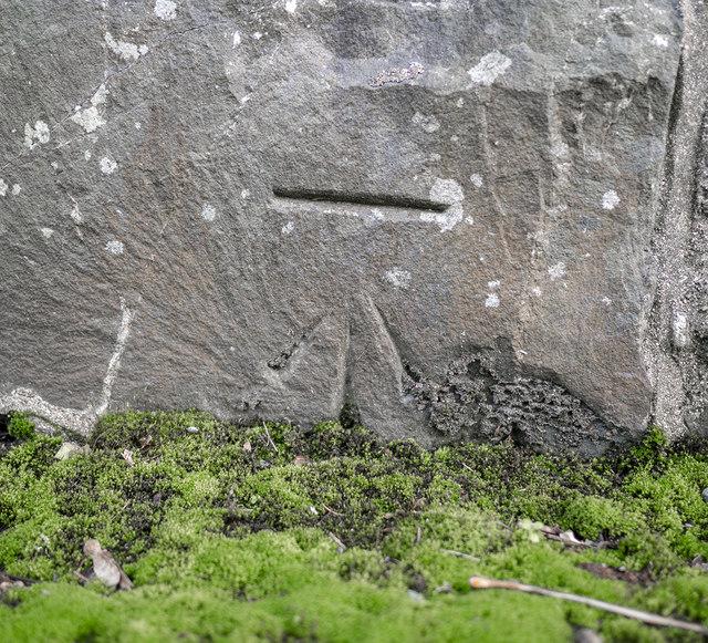 Bench Mark, Cultra