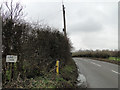 TM2793 : Hempnall Road from the entrance to Fennell's Farm by Adrian S Pye