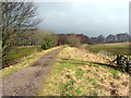 NY6860 : South Tyne Trail west of Featherstone Park by Andrew Curtis