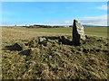 NS3678 : Walton Farm Chambered Cairn by Lairich Rig