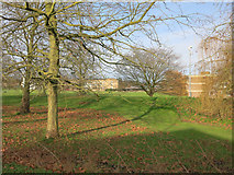 TL4359 : Churchill College grounds by Hugh Venables
