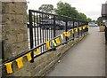 SE3055 : Yellow jerseys, Waitrose, Harrogate by Derek Harper