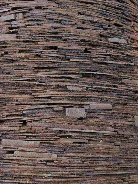 Cone - detail