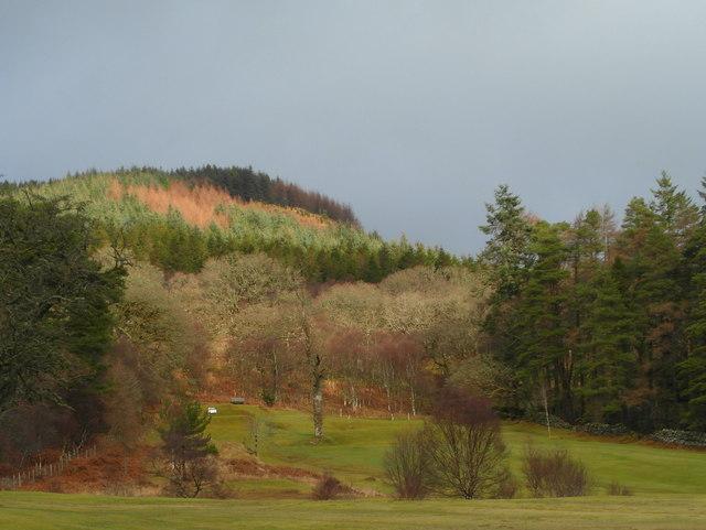 Winter colour, Tarbert golf course