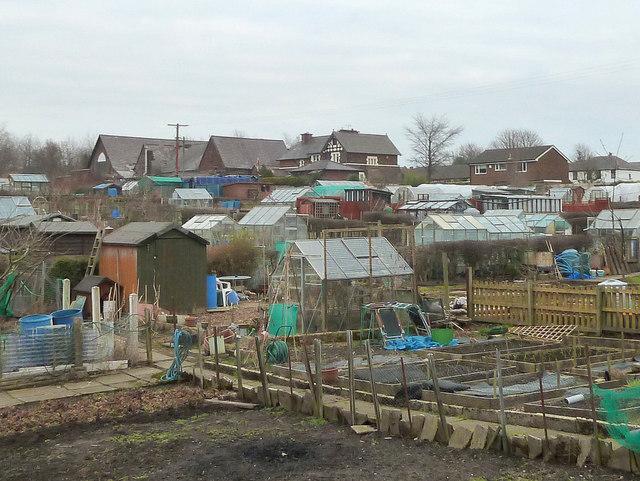 Allotments at New Springs, Wigan