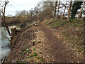 SP2965 : Riverside Walk and the steps from the open space, rear of Mercia Way, Warwick by Robin Stott