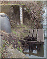 SP2965 : Calibrating the Avon, Warwick, 6 – the longer river level gauge near the gauging station by Robin Stott
