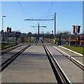 SK5036 : Tram Tracks from the Inham Road stop by David Lally