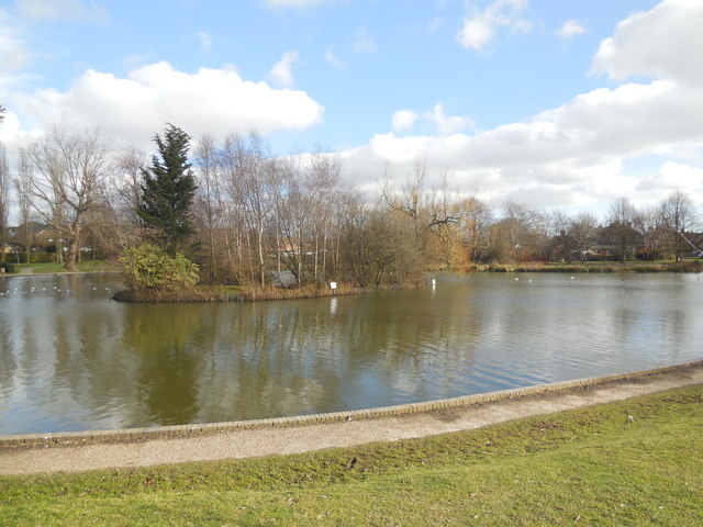 Common Pond, Hailsham