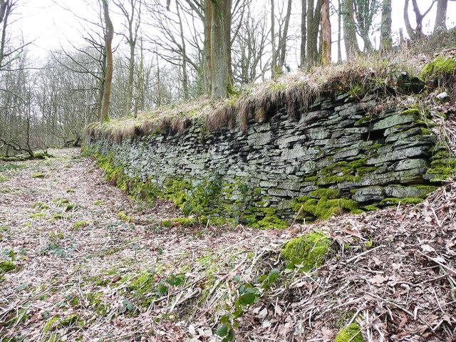 Retaining wall below Dye House Lane