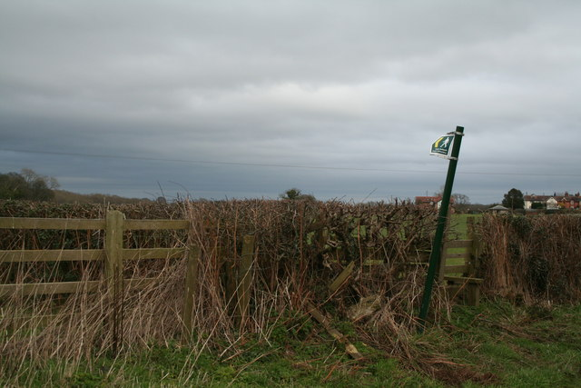 Staggered Signpost