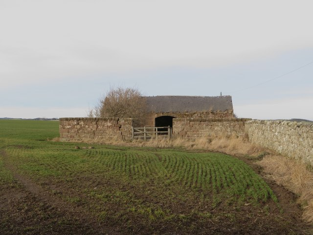 Derelict stone shed west of Adderstone Lowmill