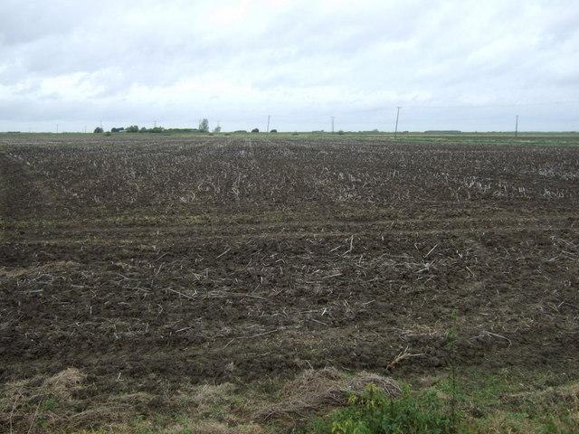 Flat farmland off the A153