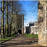 TL8564 : Bury St Edmunds: towards the tower by John Sutton