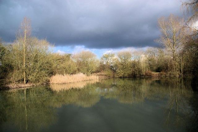 Fishpond by Sascombe Vineyard
