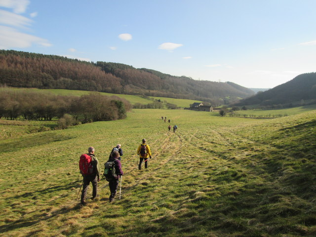 Footpath  through  fields  in  High  Dale