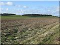 SE9757 : Farmland towards Craike Hill by JThomas