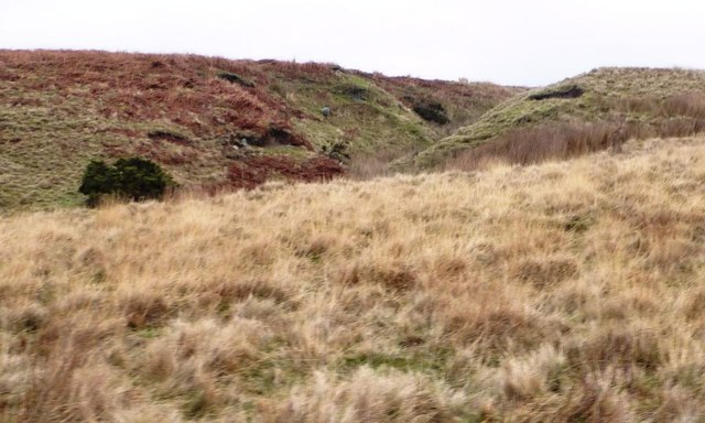 Gully of a moorland stream coming from Delves Tarn