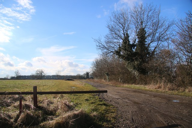Track near Thrift Farm
