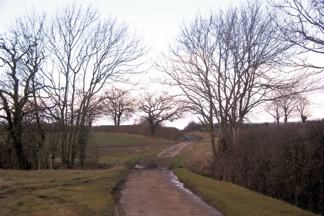 Bridleway to Longacre Green