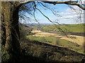 SX8158 : Dart valley from Lower Gribbin Plantation by Derek Harper
