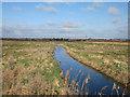 TL2089 : New ditch, Great Fen by Hugh Venables