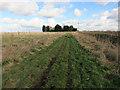 TL2287 : Path around New Decoy farm by Hugh Venables