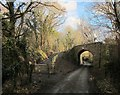 SX7979 : Wray Valley Trail at Lower Knowle Road by Derek Harper