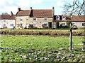 SE7485 : Signs of spring in Sinnington by Gordon Hatton
