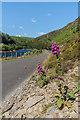 SN9166 : Alongside Garreg Ddu Reservoir by Ian Capper